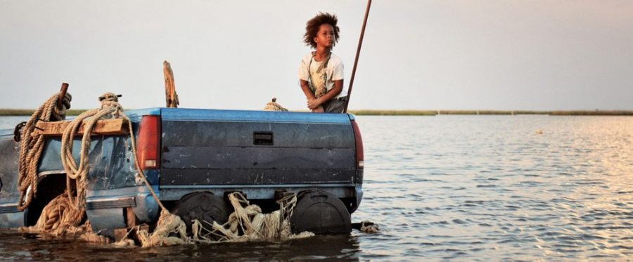 Beasts of the Southern Wild enchants viewers