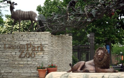 top five reasons to visit lincoln park zoo beacon