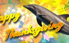 A Dolphin-tastic Thanksgiving Celebration