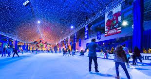 Chicago Winter Festivities