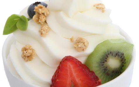 Yogurt, A Brief Overview