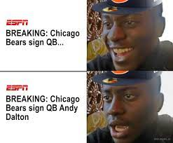 Andy Dalton Is Just What the Bears Need